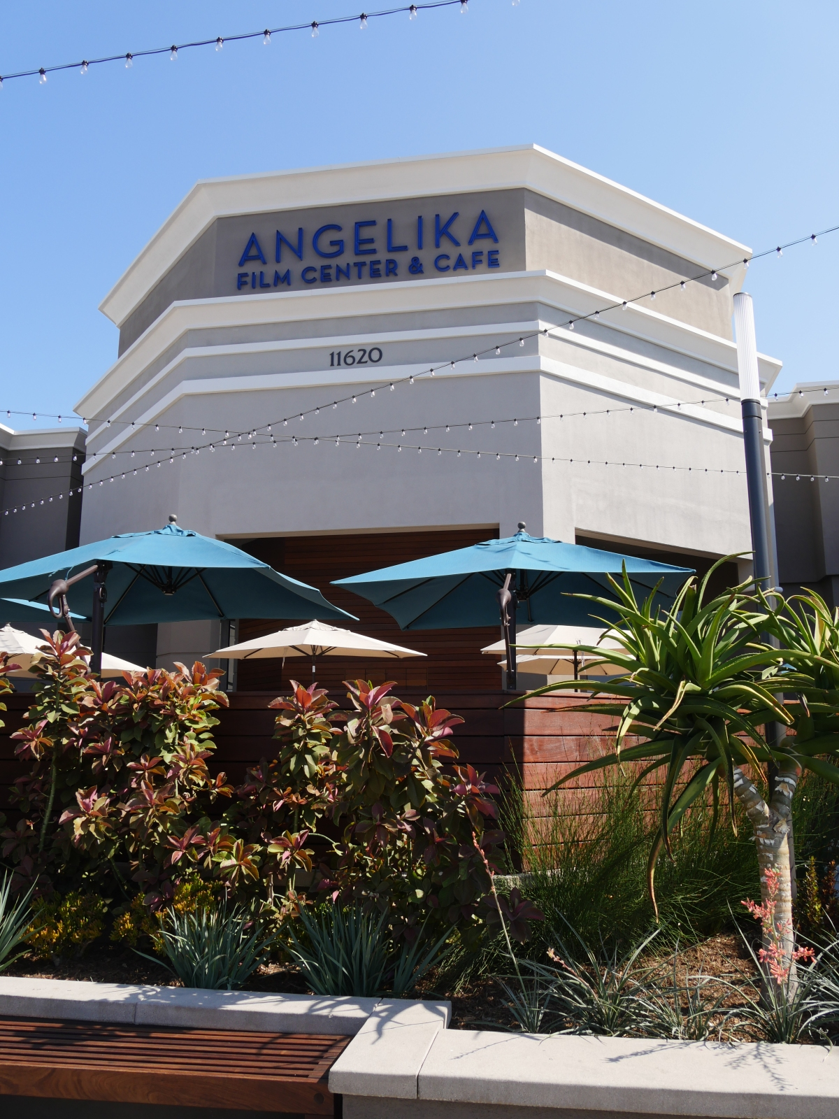 The Angelika Film Center and Cafe Makes Going to See a Movie Worthwhile Again